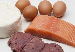 Білок в нашому харчуванні і організмі