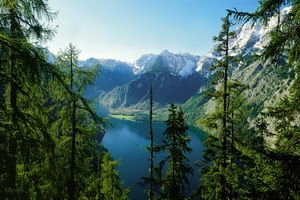 Охоронювані території: заповідники і національні парки